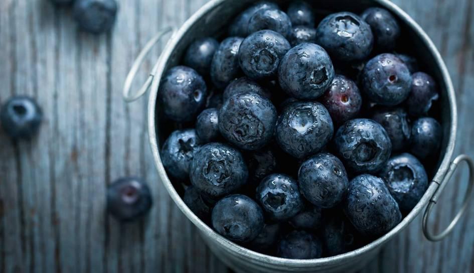 ۱۱۴۰-blueberry-blues-by-cupful.imgcache.rev51a54a857fe9dc20434fe42ba3751178.web.945.544