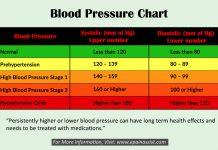 فشار خون نرمال