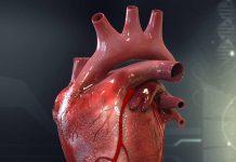 گرفتگی رگ قلب چیست؟