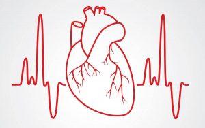 فرق نوار قلب و اکوی قلب