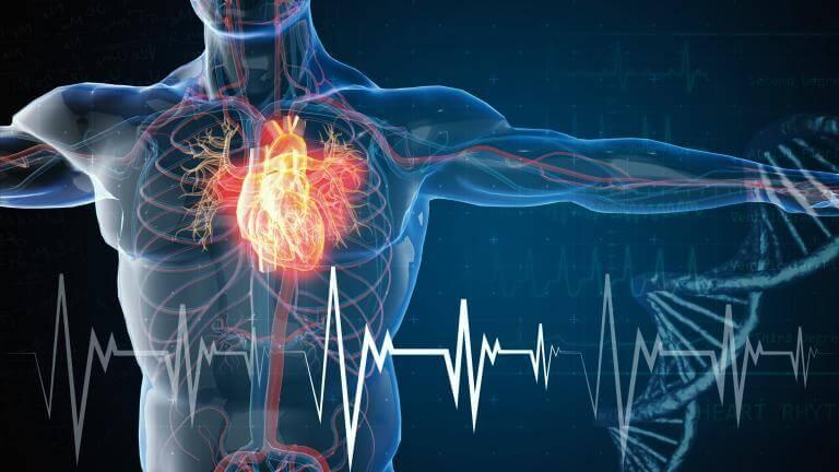 علت ناهنجاری قلبی جنین